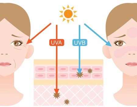 Skin Sun Damage